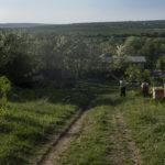 45._MOLDAVIA_DSCF8457